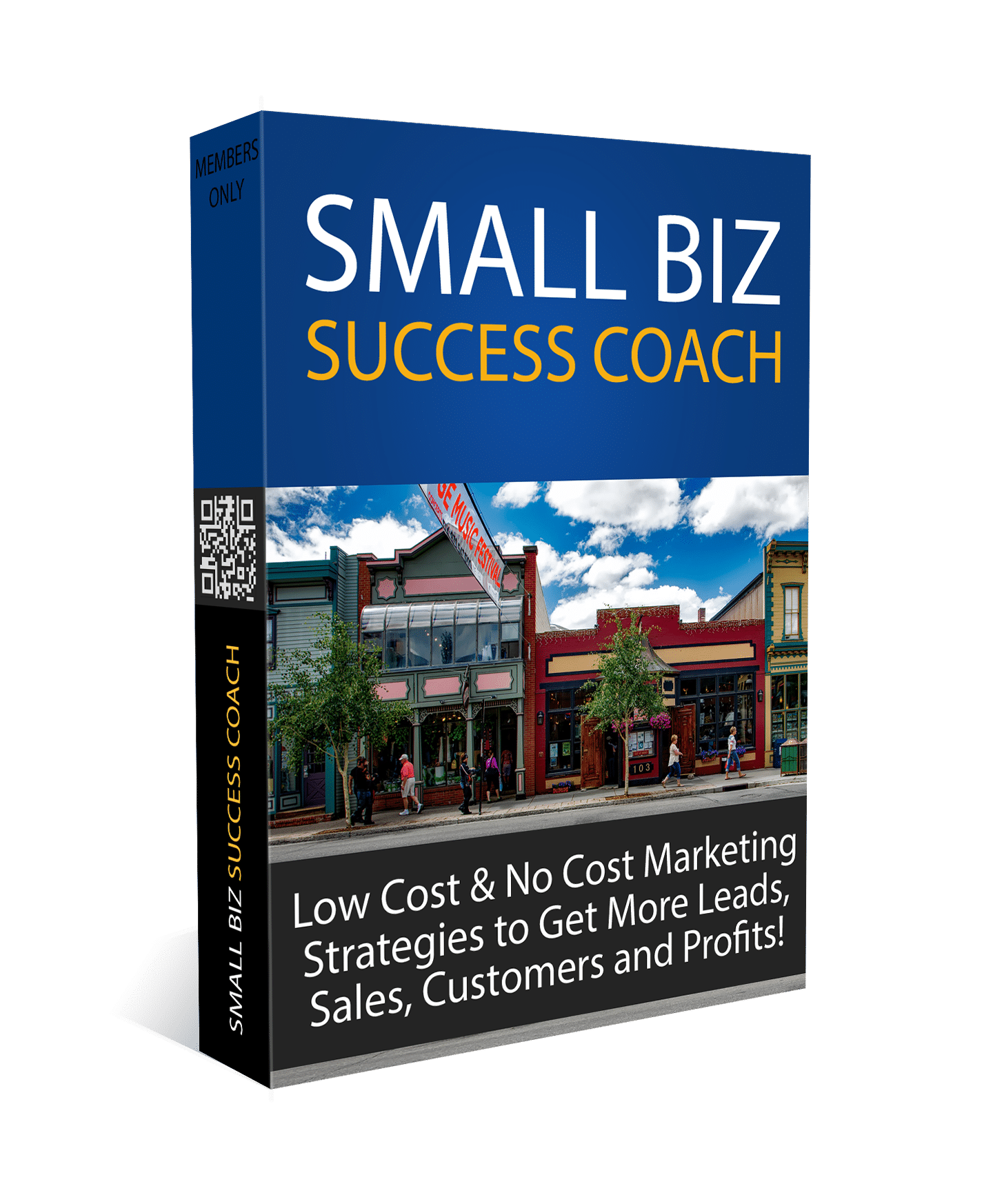 Small Biz Success Coach Program