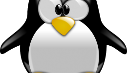 5 Ways to Beat the Google Penguin Update